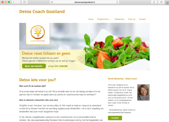 wordpress website voorbeeld detoxcoachgooiland